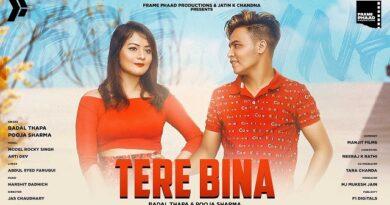 Tere Bina Lyrics - Badal Thapa   Pooja Sharma