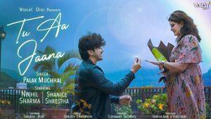 Tu Aa Jaana Lyrics Palak Muchhal | Mumbiker Nikhil