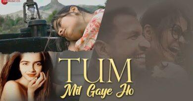 Tum Mil Gaye Ho Lyrics Ananya Sankhe