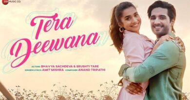 Tera Deewana Lyrics Amit Mishra