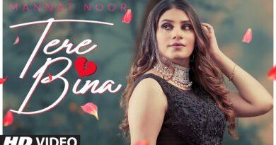 Tere Bina Lyrics Mannat Noor