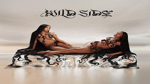 Wild Side Lyrics - Cardi B | Normani